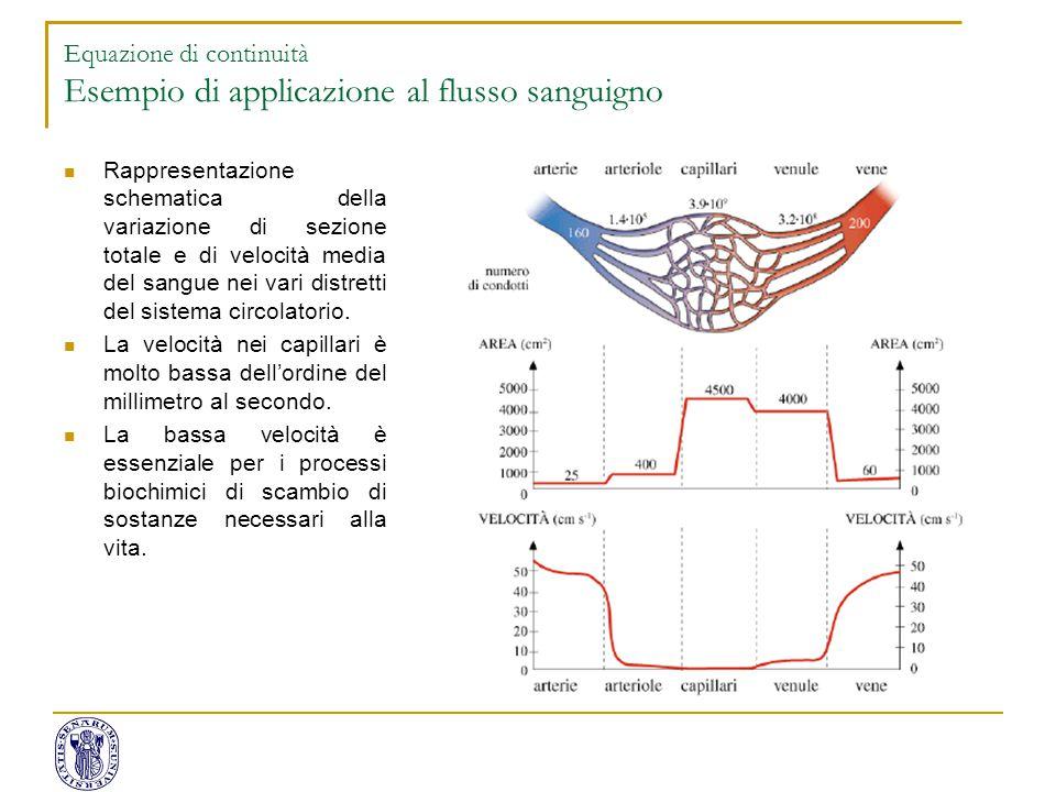 Rappresentazione schematica della variazione di sezione totale e di velocità media del sangue nei vari distretti del sistema circolatorio. La velocità