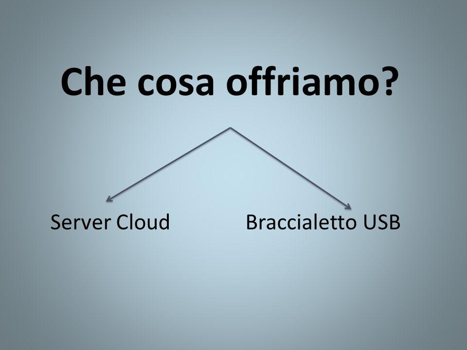 Che cosa offriamo? Braccialetto USBServer Cloud
