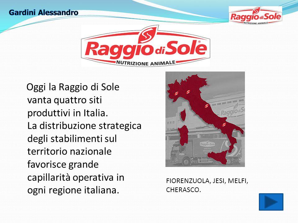 Oggi la Raggio di Sole vanta quattro siti produttivi in Italia.