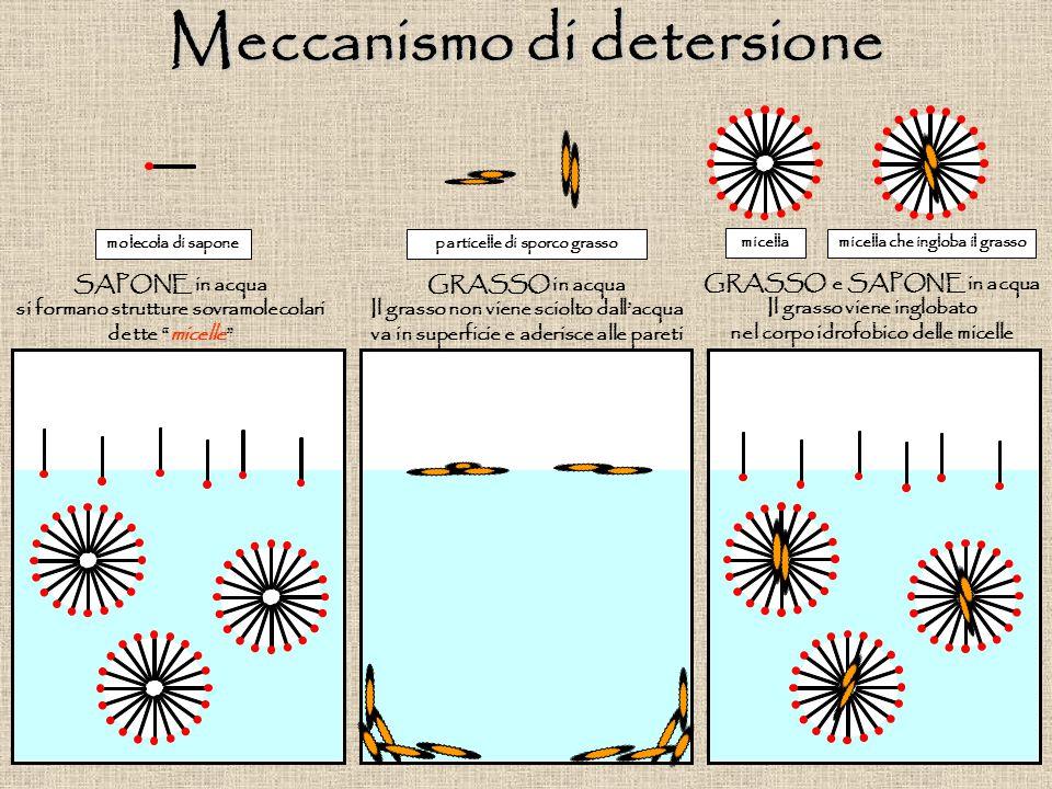 SAPONE in acqua si formano strutture sovramolecolari dette micelle GRASSO in acqua Il grasso non viene sciolto dall'acqua va in superficie e aderisce alle pareti GRASSO e SAPONE in acqua Il grasso viene inglobato nel corpo idrofobico delle micelle particelle di sporco grassomolecola di sapone micella micella che ingloba il grasso Meccanismo di detersione