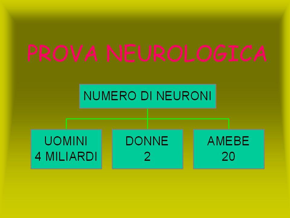 PROVA NEUROLOGICA