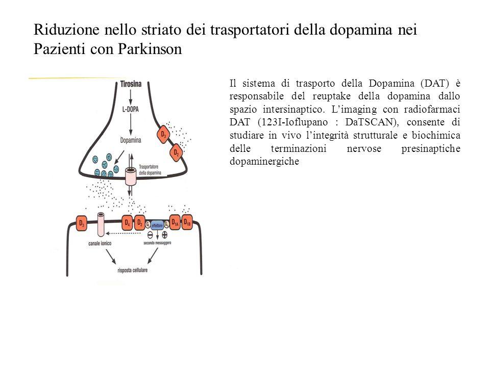 Riduzione nello striato dei trasportatori della dopamina nei Pazienti con Parkinson Il sistema di trasporto della Dopamina (DAT) è responsabile del reuptake della dopamina dallo spazio intersinaptico.