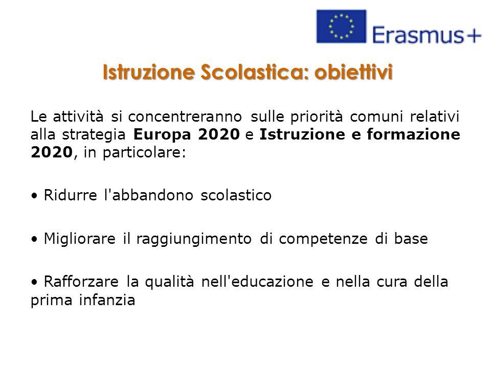 Istruzione Scolastica: obiettivi Le attività si concentreranno sulle priorità comuni relativi alla strategia Europa 2020 e Istruzione e formazione 2020, in particolare: Ridurre l abbandono scolastico Migliorare il raggiungimento di competenze di base Rafforzare la qualità nell educazione e nella cura della prima infanzia
