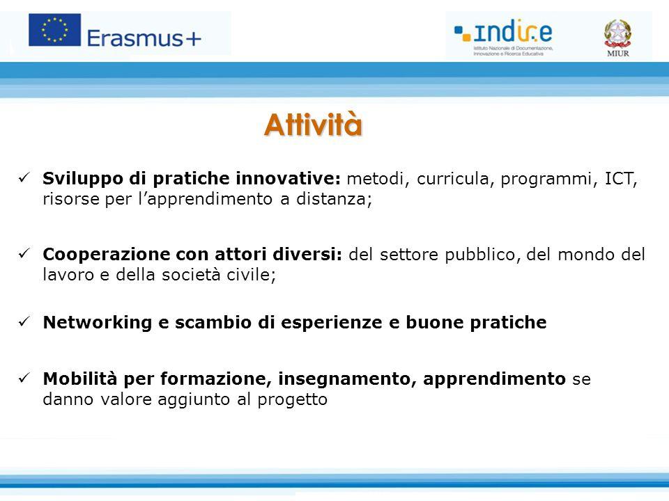 Sviluppo di pratiche innovative: metodi, curricula, programmi, ICT, risorse per l'apprendimento a distanza; Cooperazione con attori diversi: del setto