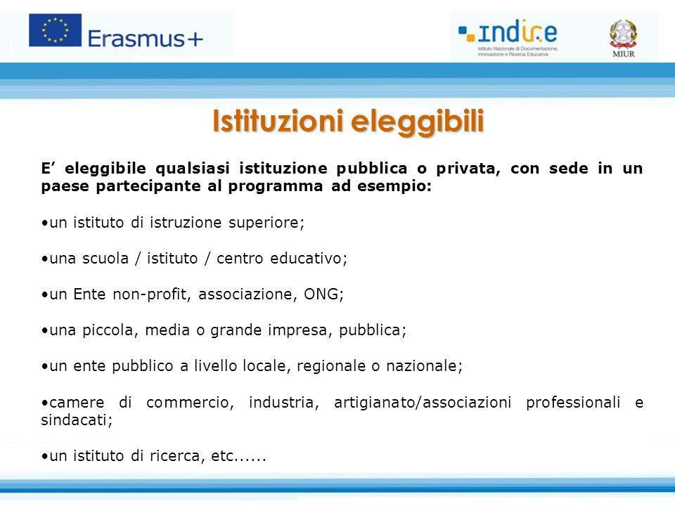 E' eleggibile qualsiasi istituzione pubblica o privata, con sede in un paese partecipante al programma ad esempio: un istituto di istruzione superiore