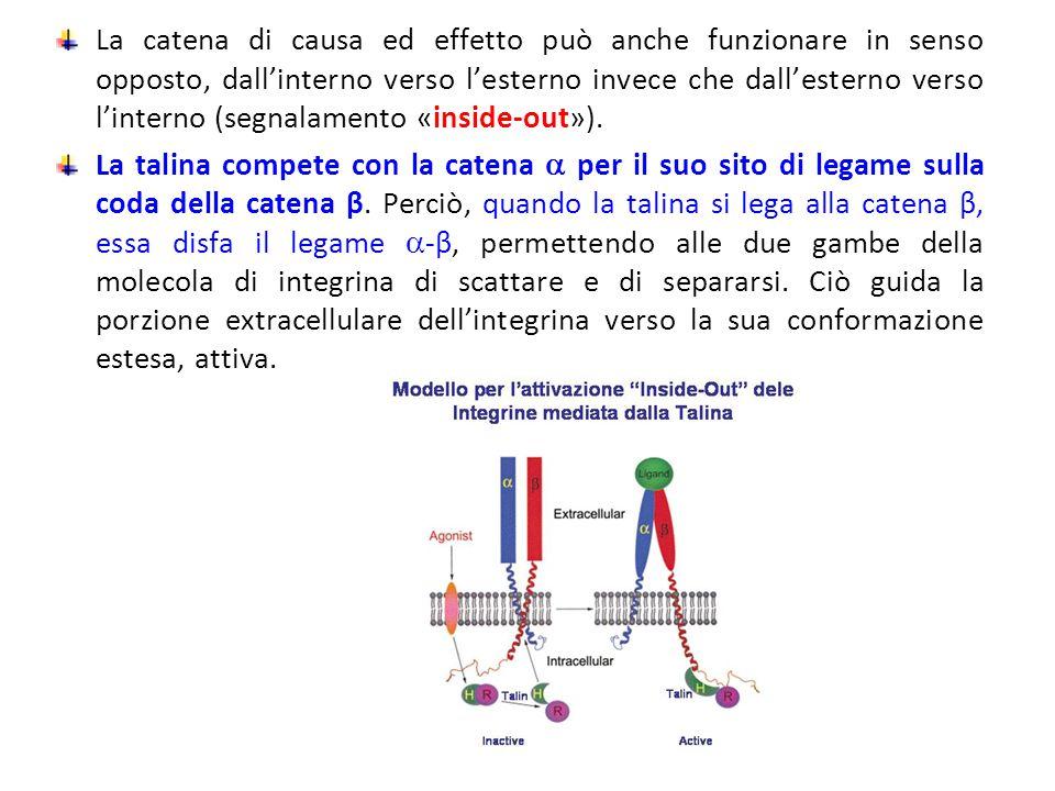 La catena di causa ed effetto può anche funzionare in senso opposto, dall'interno verso l'esterno invece che dall'esterno verso l'interno (segnalament