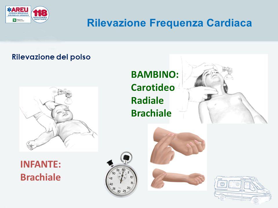 INFANTE: Brachiale Rilevazione Frequenza Cardiaca BAMBINO: Carotideo Radiale Brachiale BAMBINO: Carotideo Radiale Brachiale Rilevazione del polso