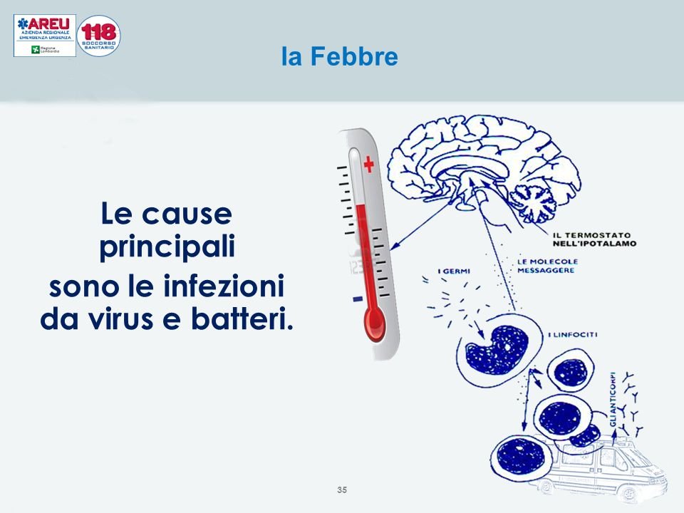 Le cause principali sono le infezioni da virus e batteri. la Febbre 35