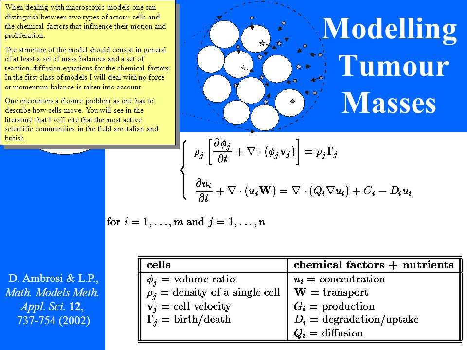 Only tumor cells in 1D 1.Single population with constant density 2.Spherical symmetry 3.Chemical factors and nutrients diffuse R - H.