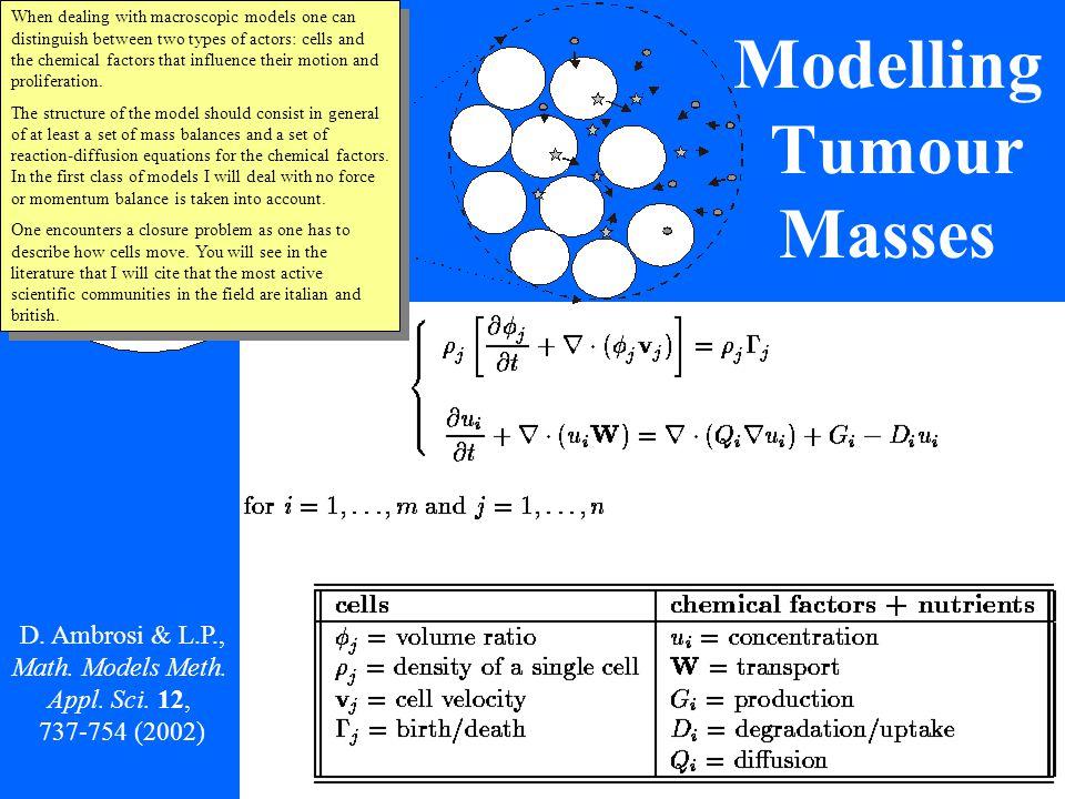 Multiphase Models - D.Ambrosi & L. P., Math. Models Methods Appl.