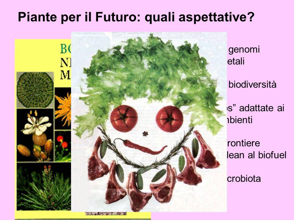 """Decifrare i genomi dei vegetali Conservare la biodiversità Sviluppare """"crops"""" adattate ai Nuovi ambienti Le nuove frontiere From green to clean al bio"""