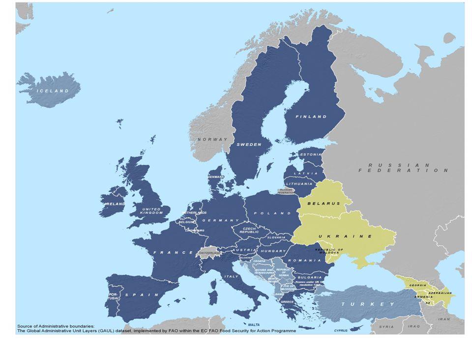 Implicazioni del Parternariato Orientale Due zone in competizione Sia la UE che la Russia promuovono una più ampia istituzionalizzazione sebbene ci siano grandi differenze rispetto ai valori e a ciò che sono in grado di offrire Leader nazionali tatticamente oscillano da una parte all'altra per motivi nazionali e anche personali (si veda il caso dell'Ucraina) Queste oscillazioni impediscono il consolidamento democratico dei paesi