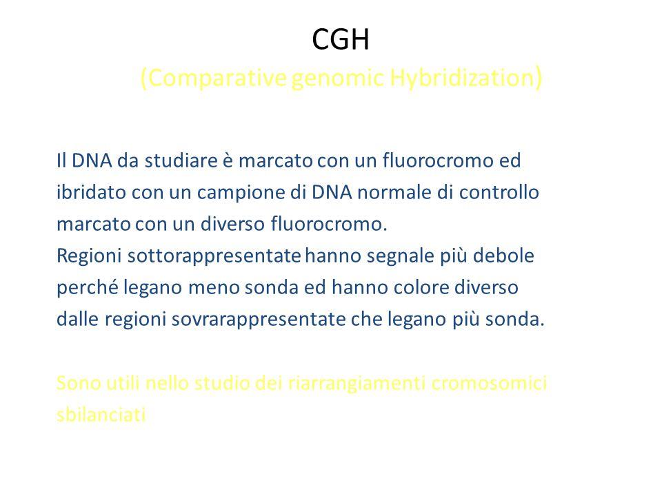 CGH (Comparative genomic Hybridization ) Il DNA da studiare è marcato con un fluorocromo ed ibridato con un campione di DNA normale di controllo marca