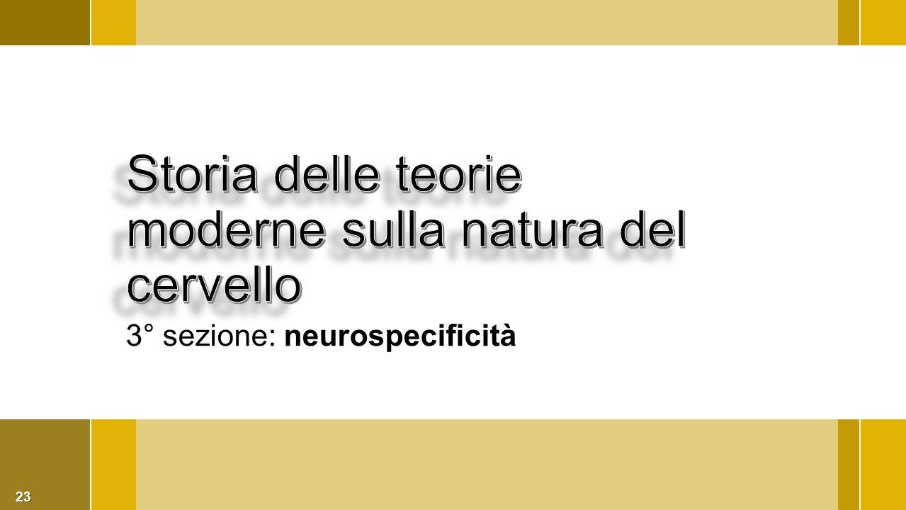 23 3° sezione: neurospecificità