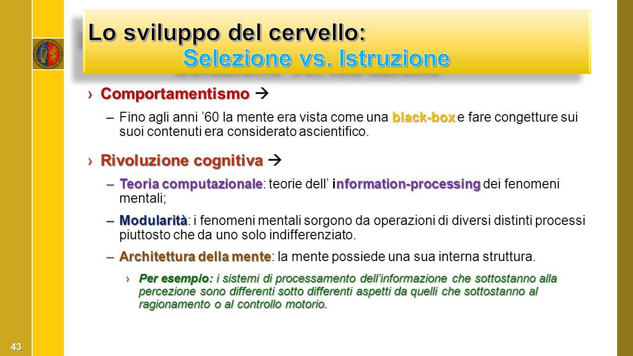 ›Comportamentismo ›Comportamentismo  black-box –Fino agli anni '60 la mente era vista come una black-box e fare congetture sui suoi contenuti era con