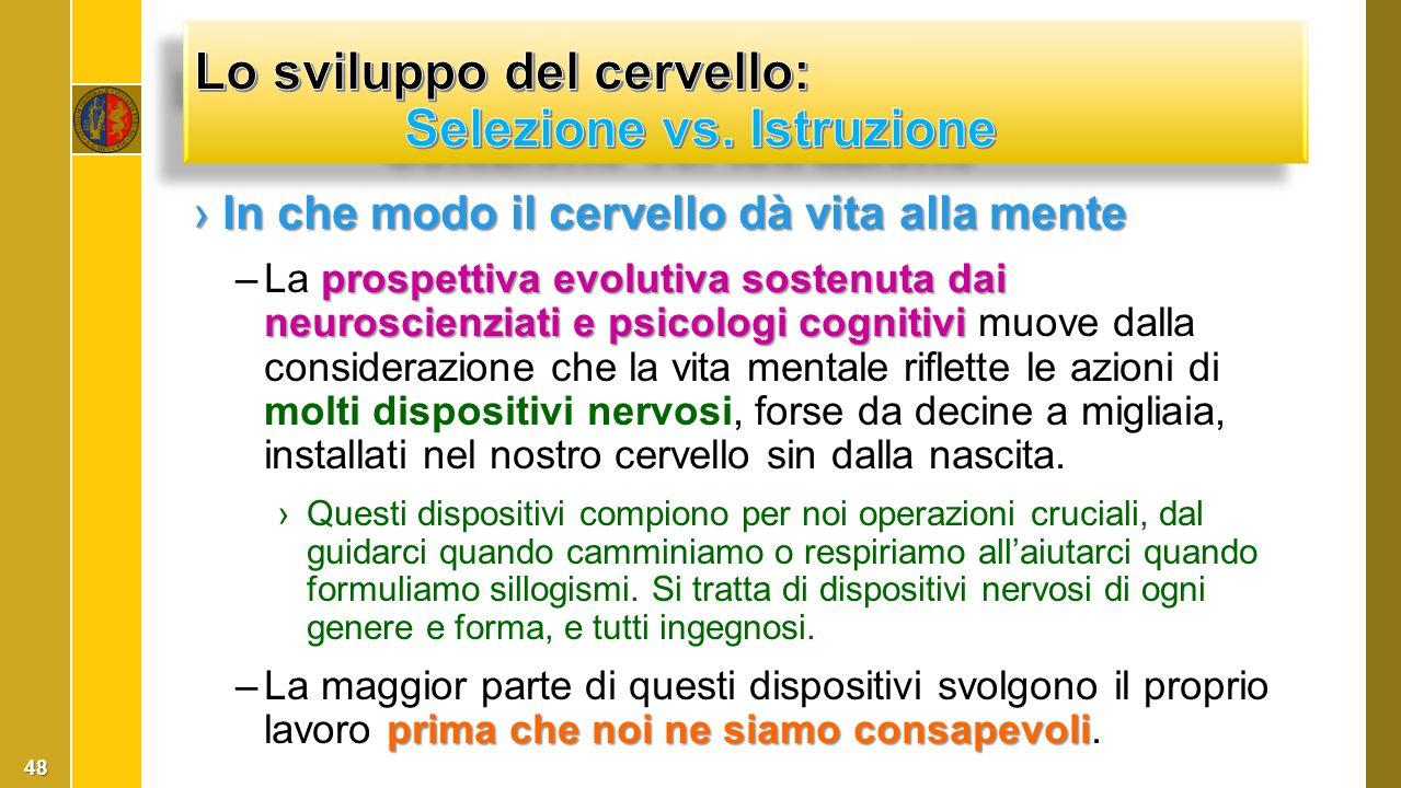 ›In che modo il cervello dà vita alla mente prospettiva evolutiva sostenuta dai neuroscienziati e psicologi cognitivi –La prospettiva evolutiva sosten