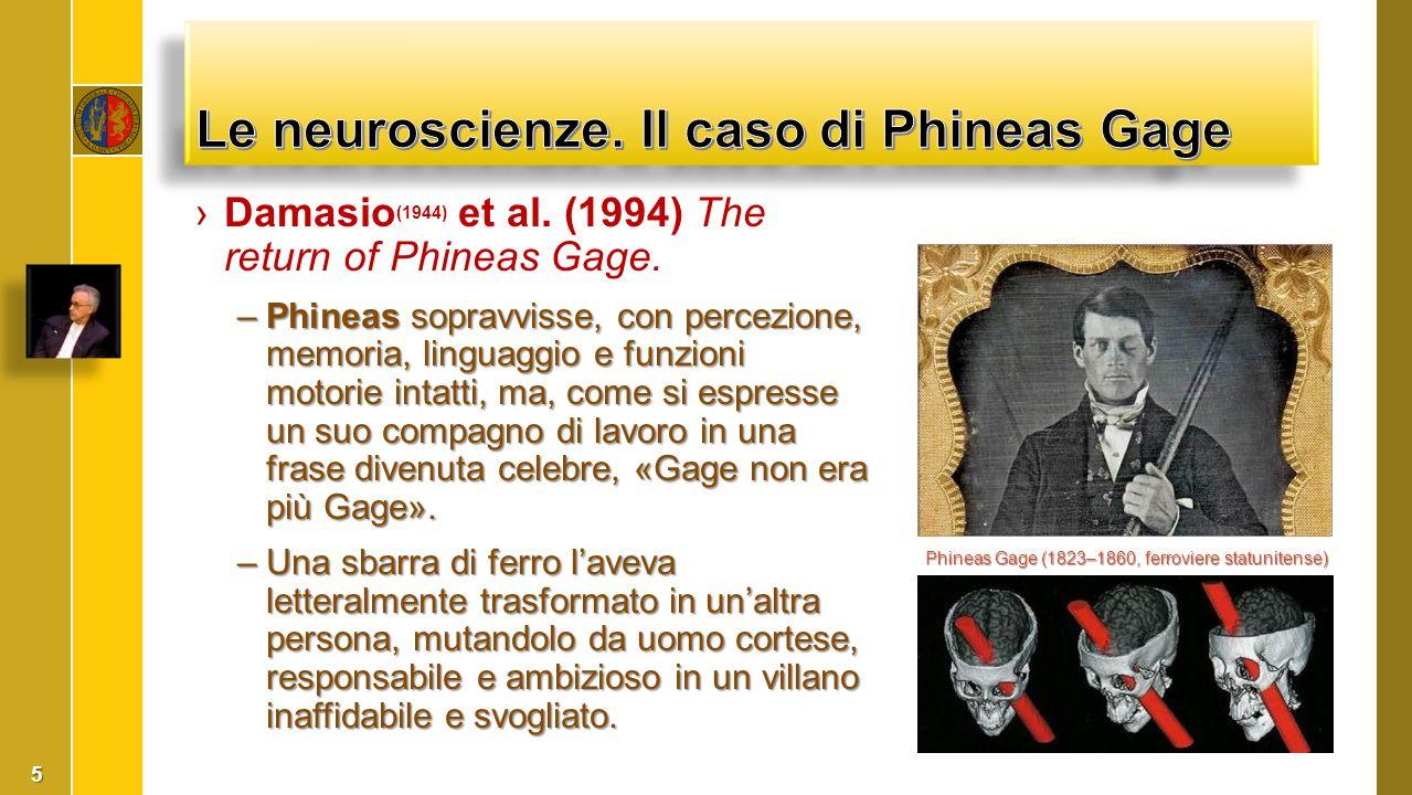 ›Damasio (1944) et al. (1994) The return of Phineas Gage. –Phineas sopravvisse, con percezione, memoria, linguaggio e funzioni motorie intatti, ma, co