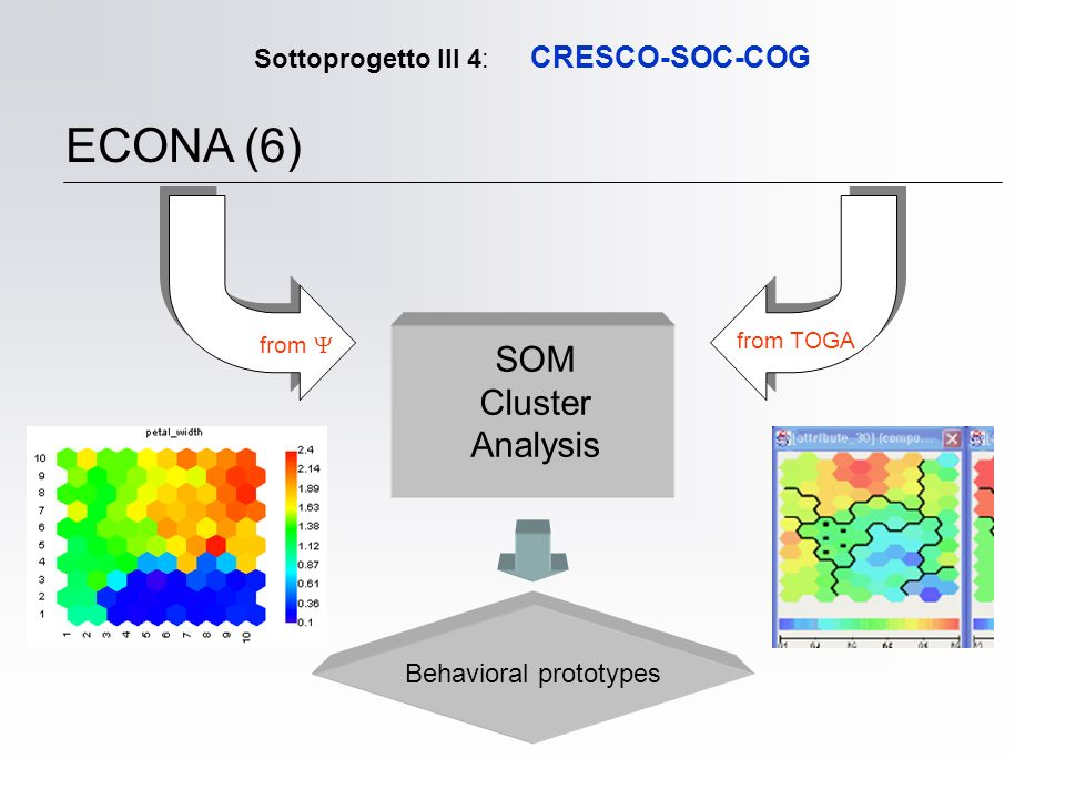 Sottoprogetto III 4: CRESCO-SOC-COG ECONA (6) from from TOGA SOM Cluster Analysis Behavioral prototypes