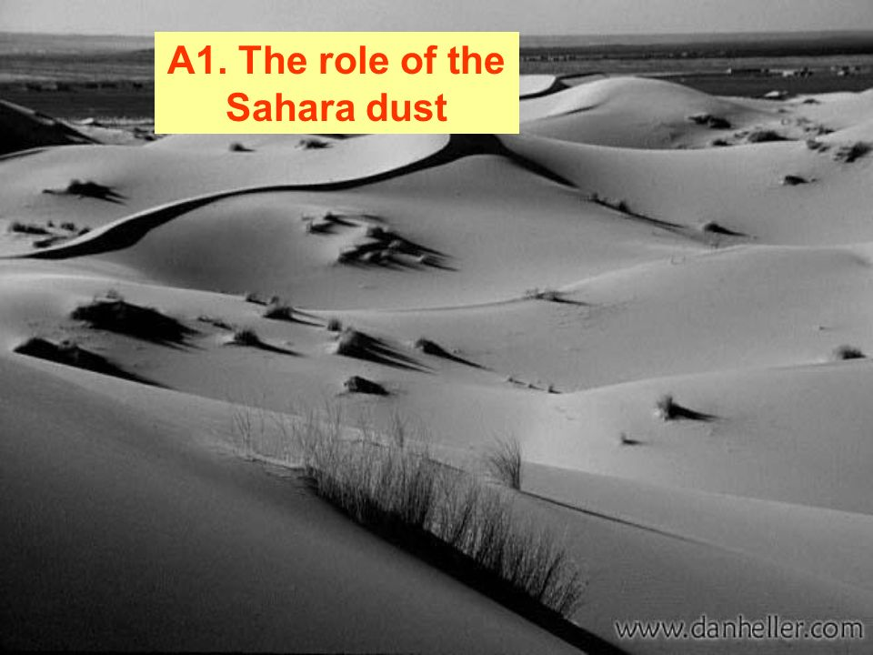 A1. The role of the Sahara dust