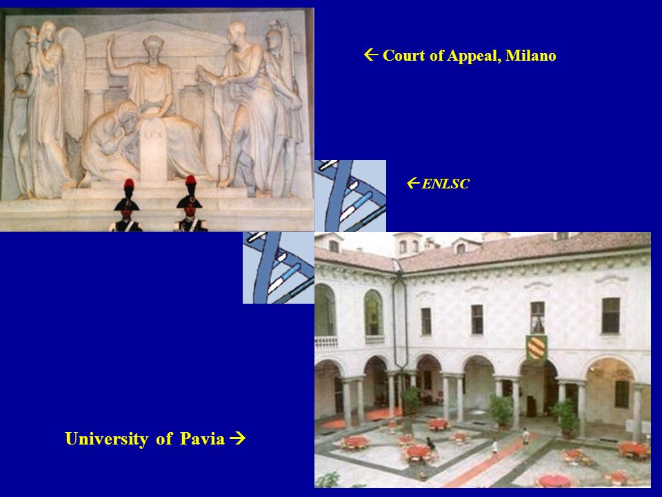 University of Pavia Court of Appeal, Milano ENLSC