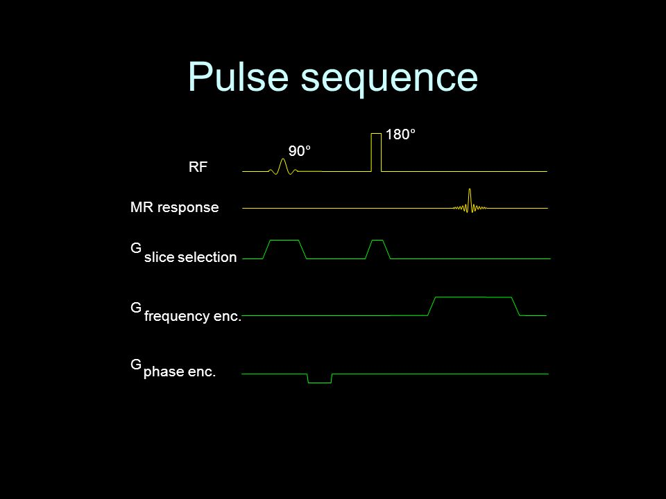 Pulse sequence RF MR response G phase enc. G frequency enc. G slice selection 180° 90°