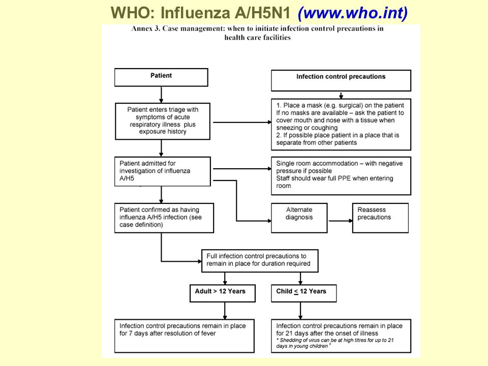 WHO: Influenza A/H5N1 (