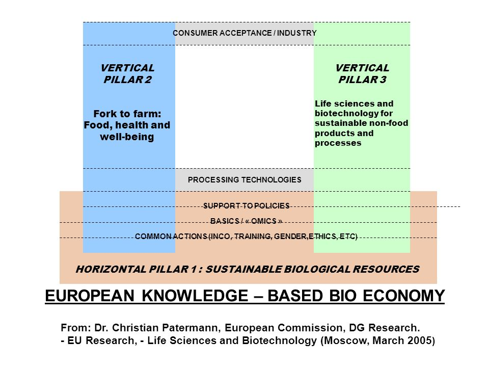 EUROPEAN KNOWLEDGE – BASED BIO ECONOMY PROCESSING TECHNOLOGIES VERTICAL PILLAR 2 Fork to farm: Food, health and well-being VERTICAL PILLAR 3 Life sciences and biotechnology for sustainable non-food products and processes CONSUMER ACCEPTANCE / INDUSTRY SUPPORT TO POLICIES BASICS / « OMICS » COMMON ACTIONS (INCO, TRAINING, GENDER,ETHICS, ETC) HORIZONTAL PILLAR 1 : SUSTAINABLE BIOLOGICAL RESOURCES From: Dr.