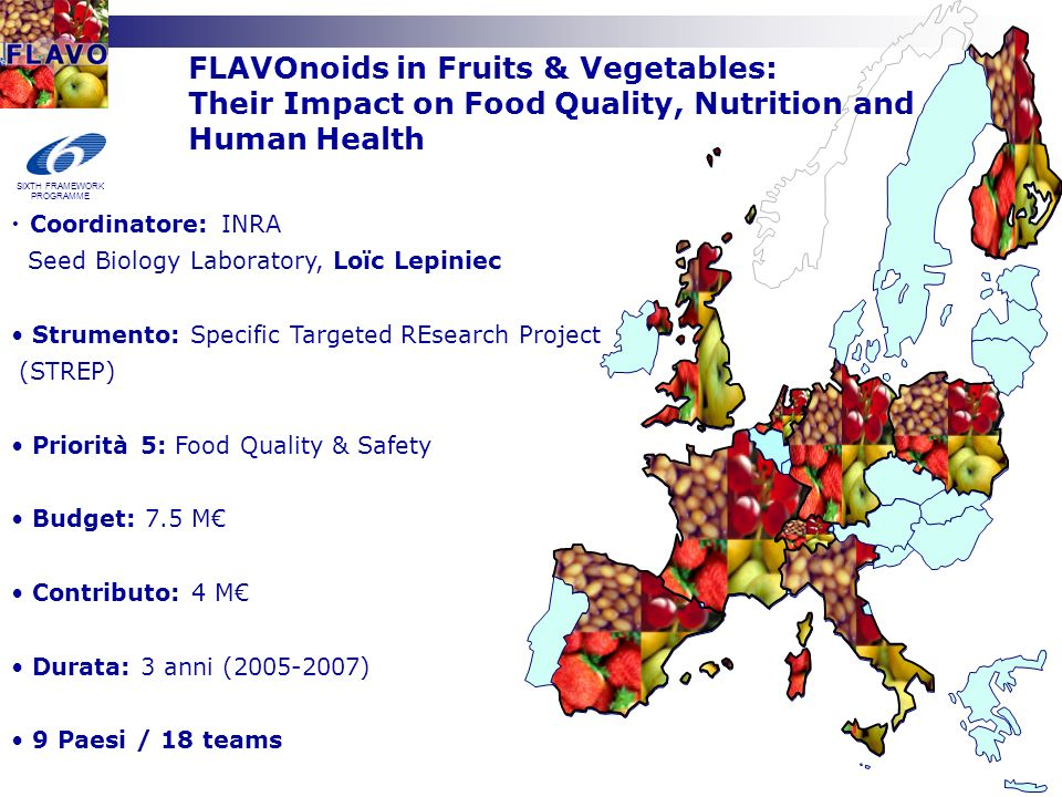 FLAVOnoids in Fruits & Vegetables: Their Impact on Food Quality, Nutrition and Human Health Coordinatore: INRA Seed Biology Laboratory, Loïc Lepiniec Strumento: Specific Targeted REsearch Project (STREP) Priorità 5: Food Quality & Safety Budget: 7.5 M Contributo: 4 M Durata: 3 anni ( ) 9 Paesi / 18 teams SIXTH FRAMEWORK PROGRAMME