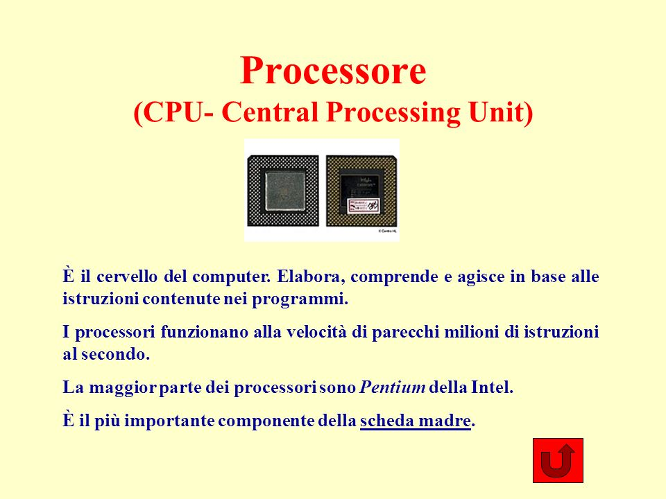 Processore (CPU- Central Processing Unit) È il cervello del computer.