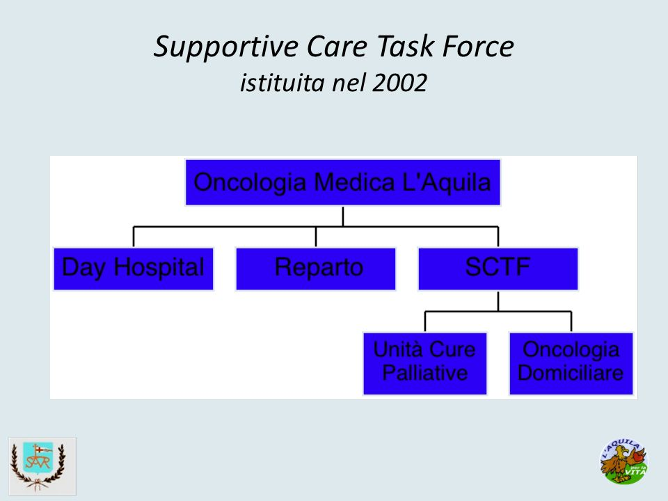 Supportive Care Task Force istituita nel 2002