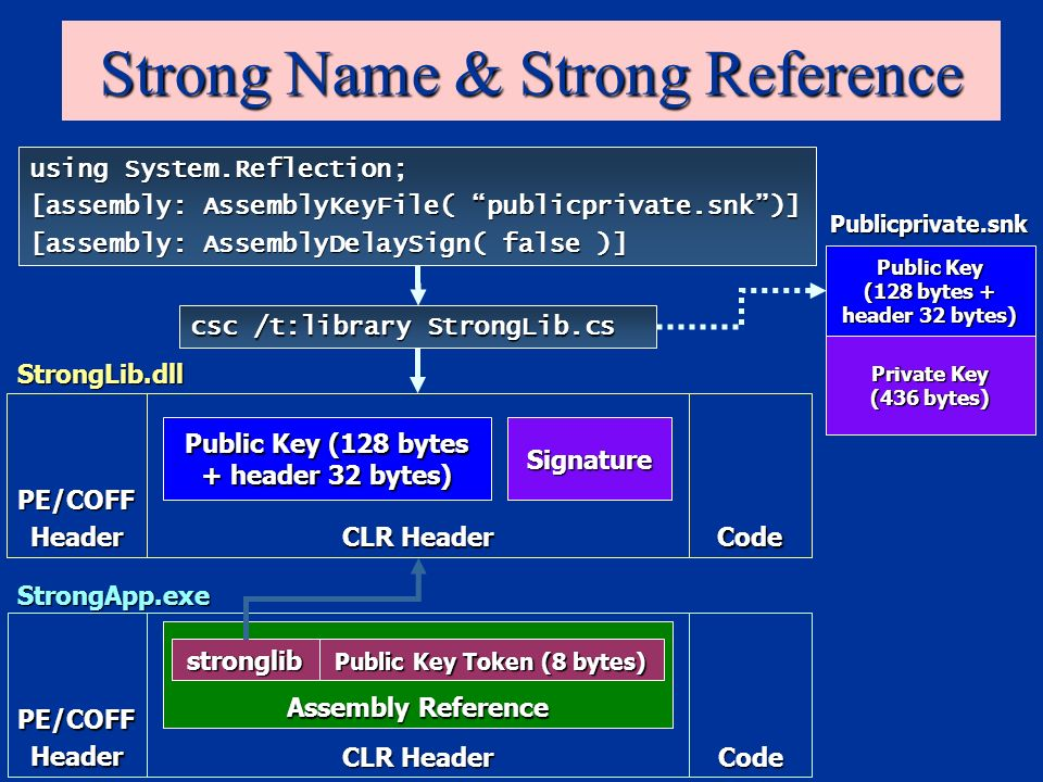 Strong Name & Strong Reference PE/COFFHeader CLR Header Code StrongApp.exe using System.Reflection; [assembly: AssemblyKeyFile( publicprivate.snk)] [assembly: AssemblyDelaySign( false )] csc /t:library StrongLib.cs Assembly Reference stronglib Public Key Token (8 bytes) PE/COFFHeader CLR Header Code Public Key (128 bytes + header 32 bytes) Signature StrongLib.dll Private Key (436 bytes) Publicprivate.snk