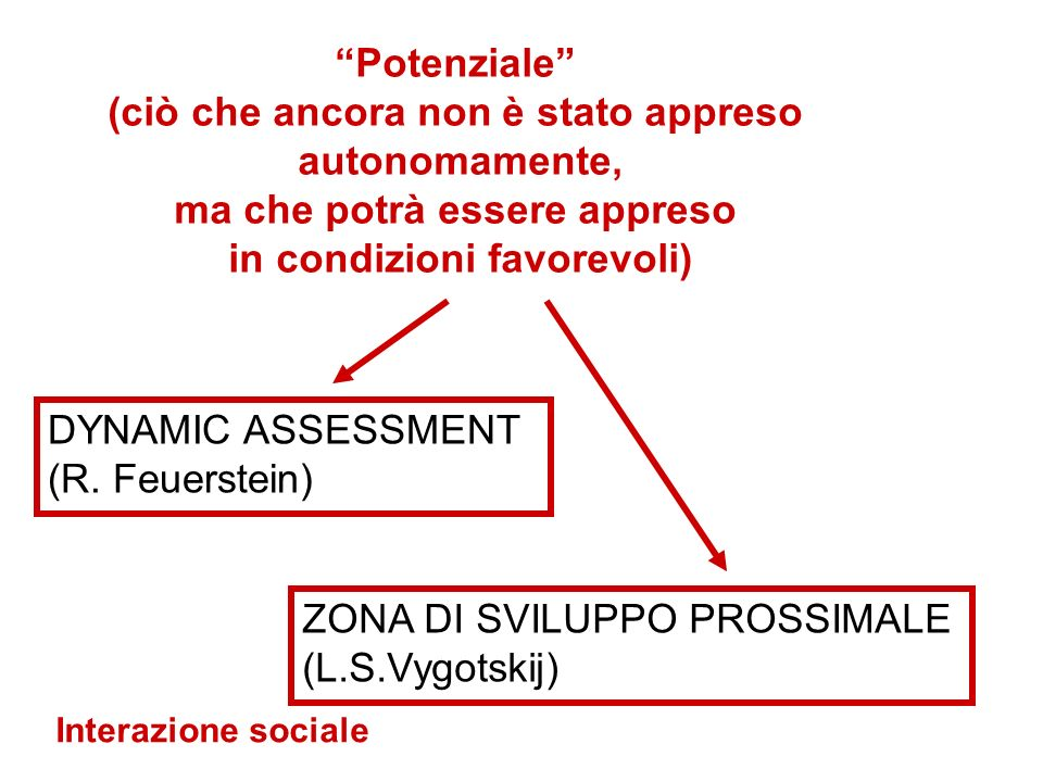 DYNAMIC ASSESSMENT (R.