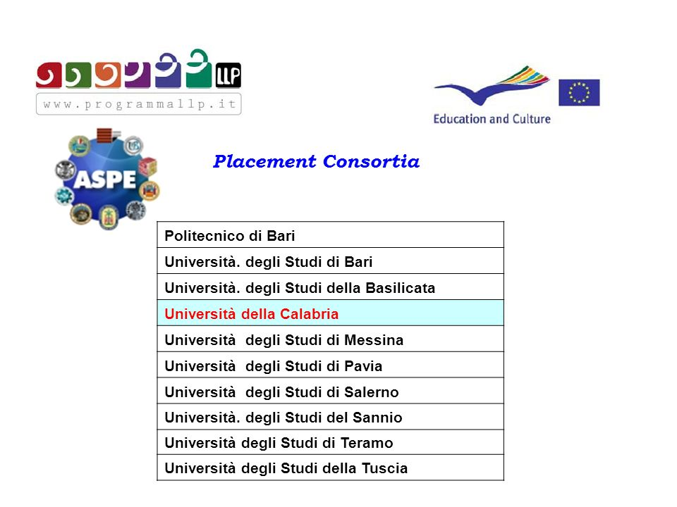 Placement Consortia Politecnico di Bari Università.