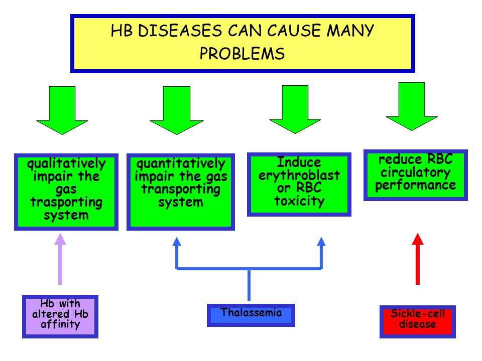 HB DISEASES CAN CAUSE MANY PROBLEMS qualitatively impair the gas trasporting system quantitatively impair the gas transporting system Induce erythroblast or RBC toxicity reduce RBC circulatory performance Sickle-cell disease Hb with altered Hb affinity Thalassemia
