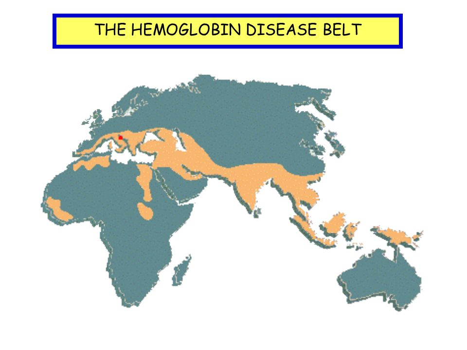 THE HEMOGLOBIN DISEASE BELT
