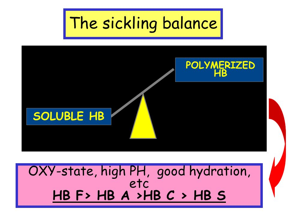 The sickling balance SOLUBLE HB POLYMERIZED HB OXY-state, high PH, good hydration, etc HB F> HB A >HB C > HB S