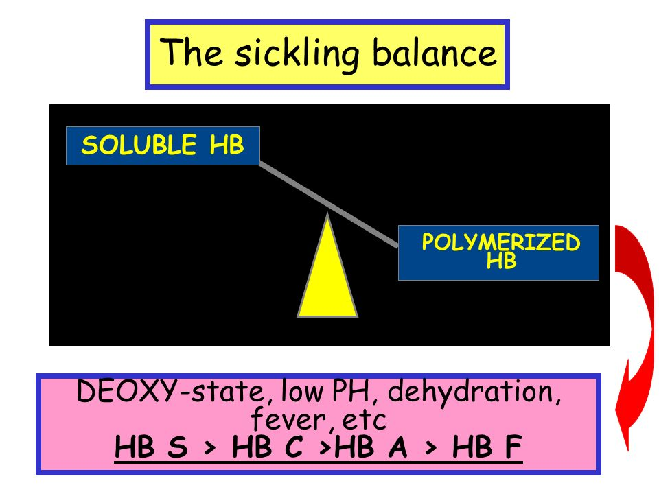 The sickling balance SOLUBLE HB POLYMERIZED HB DEOXY-state, low PH, dehydration, fever, etc HB S > HB C >HB A > HB F