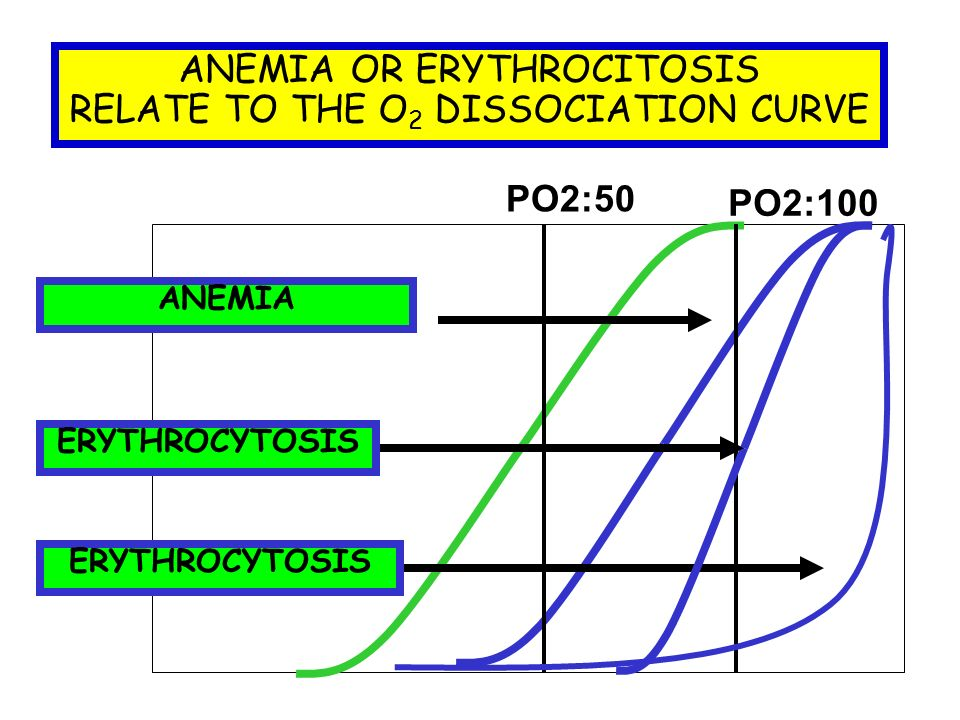 ANEMIA OR ERYTHROCITOSIS RELATE TO THE O 2 DISSOCIATION CURVE PO2:100 PO2:50 ANEMIAERYTHROCYTOSIS