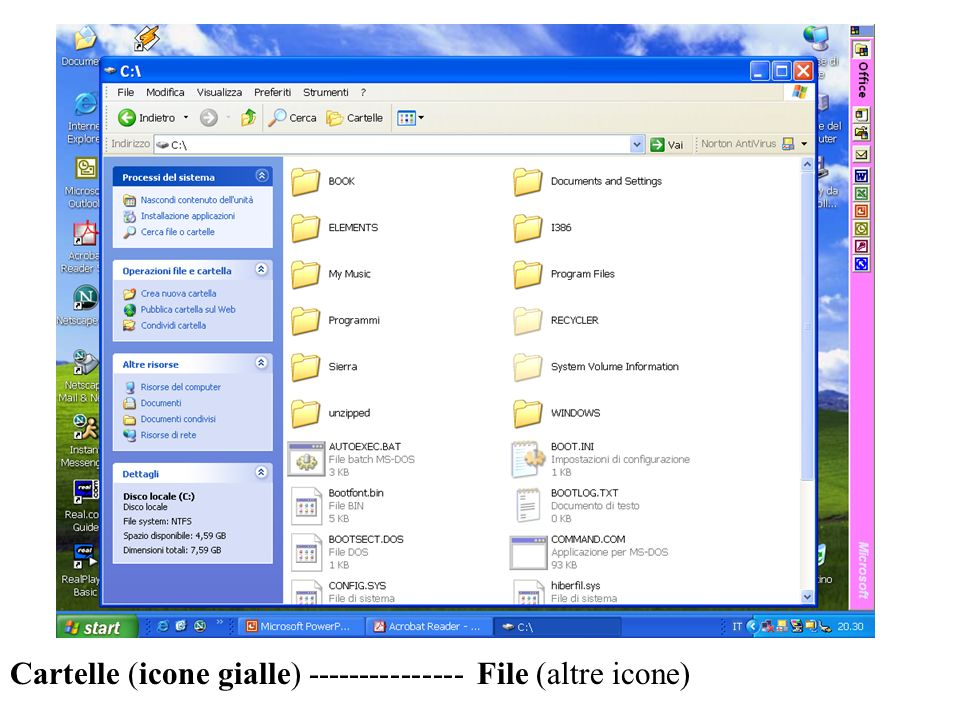 Cartelle (icone gialle) File (altre icone)