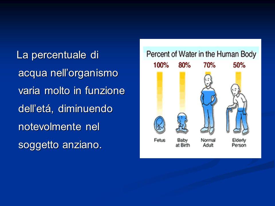 Il Corpo Umano è Formato In Grande Quantità Da Acqua Con Circa Il