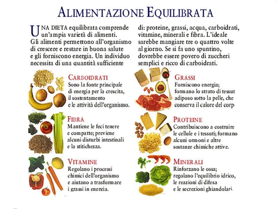 regime alimentare sano ed equilibrato